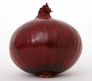 v8-onion